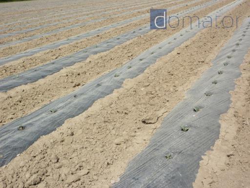 SZPILKI KOTWICE KOŁKI 50szt 20cm do agrowłókniny