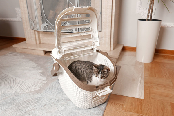 Transporter koszyk dla zwierząt CURVER